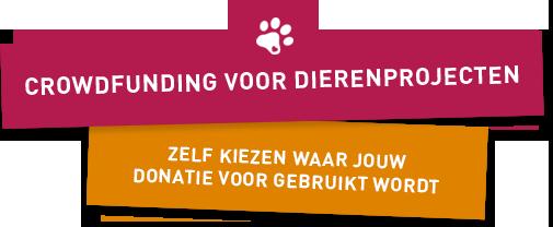 DierenDonatie.nl - Crowdfunding voor dieren projecten