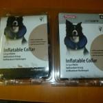 donatie voor asiel honden