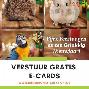 E-cards versturen banner